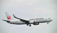 ニュース画像:JAL国内線、5月18日から31日は8,509便を減便 減便率は7割