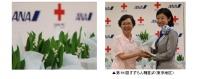 ニュース画像:ANAグループ、全国の赤十字病院に「しあわせの花 すずらん」を届ける