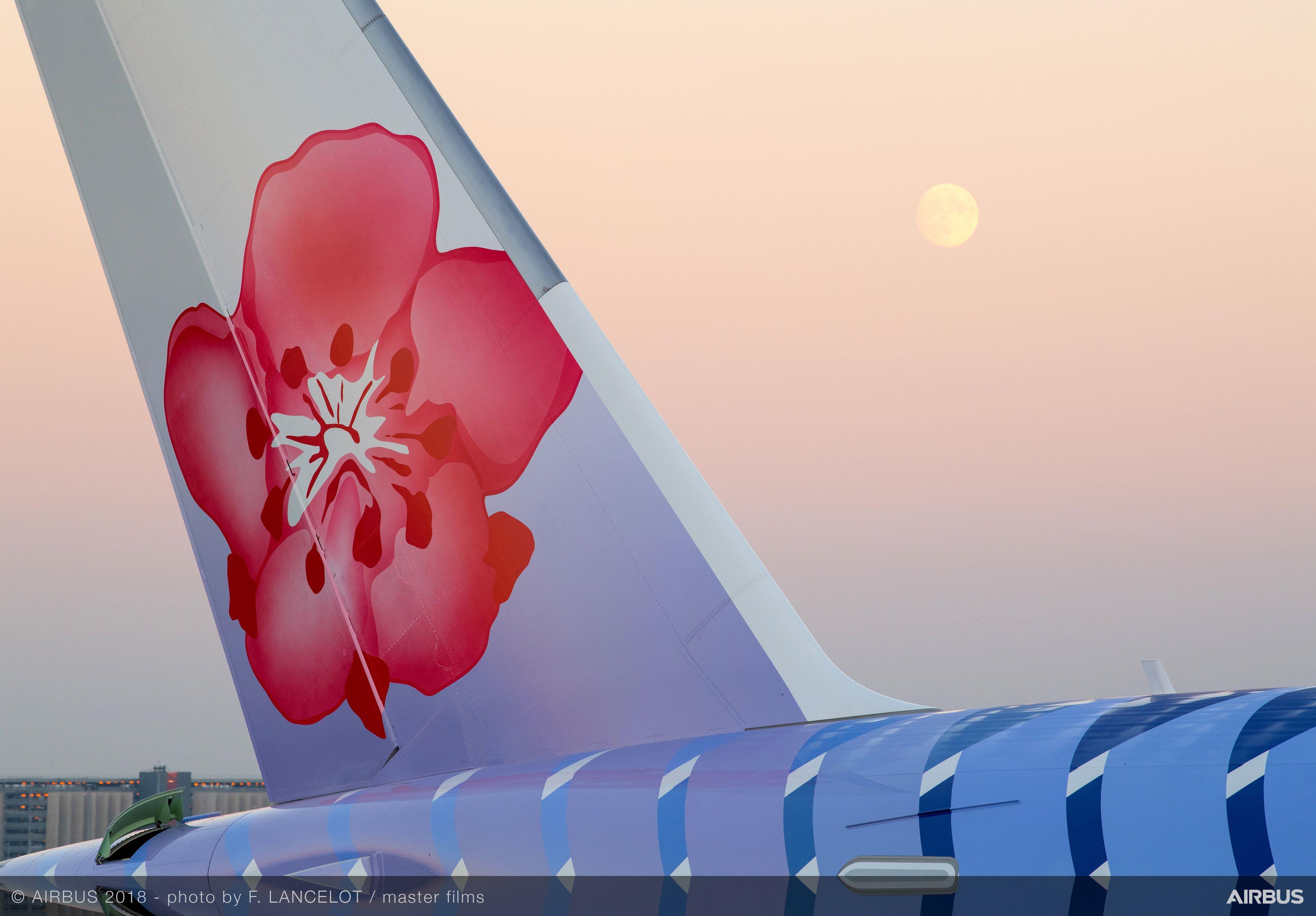 上海浦東国際空港から初のARJ21が運航、江西航空の上海/南昌線で
