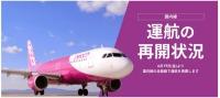 ニュース画像:ピーチ、カレンダー形式で運航の再開状況がわかる特設ページを開設