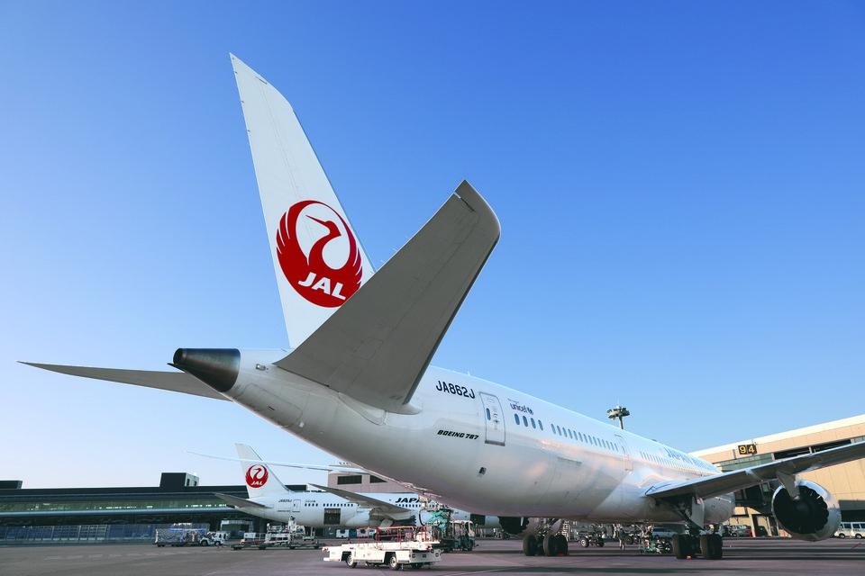 大韓航空、仁川発の国際線で手荷物の機内積載を搭乗者にアプリで通知