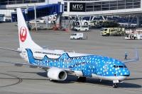 ニュース画像:JTAの名古屋/那覇線、6月19日から1日最大3往復便に増便