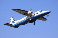 新中央航空、8月の調布/大島線は1日最大3往復便に増便の画像
