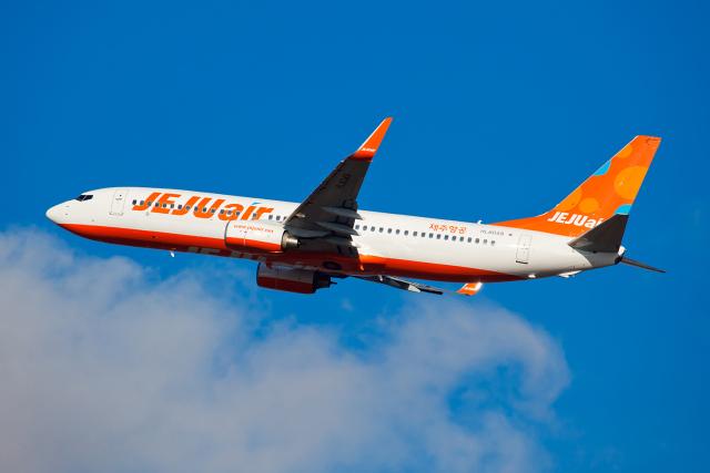 ニュース画像 1枚目:チェジュ航空 737-800