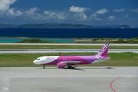 ニュース画像:ピーチ、7月22日から国内線全便の運航再開 8月から増便