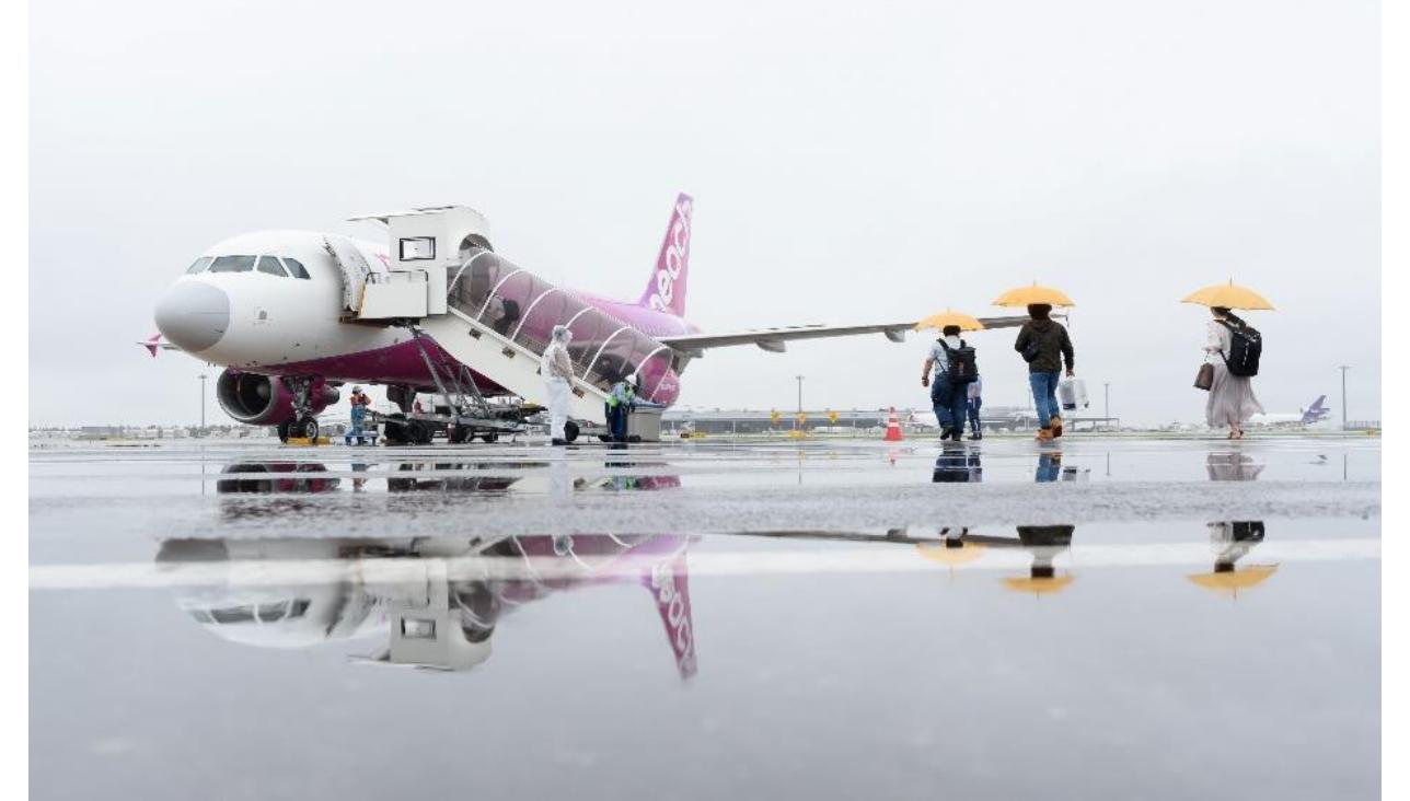 JALグループ、6月20日以降のウルトラ先得など一部運賃の変更と追加