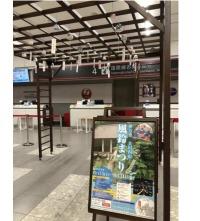 ニュース画像:JAL、8月末まで福岡空港で伊万里焼風鈴を展示 キャンペーンも実施