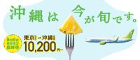ニュース画像:ソラシドエア、8月と9月に羽田/那覇線で臨時便 10,200円から