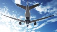 デルタ航空、アメックス提携カードのメダリオン会員資格に特別措置の画像