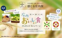ニュース画像:ANA、8月から10月の羽田/庄内線利用で山形の名産品をプレゼント