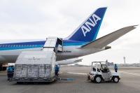 ニュース画像:ANA国際線貨物の燃油サーチャージ、8月発行分は2段階値上げ