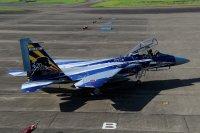 ニュース画像:飛行教育航空隊創隊20周年、F-15DJ記念塗装機が登場