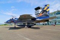 ニュース画像 2枚目:F-15DJ記念塗装機