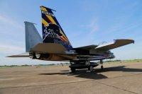 ニュース画像 3枚目:F-15DJ記念塗装機
