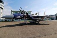 ニュース画像 4枚目:F-15DJ記念塗装機