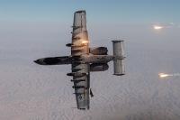 ニュース画像 3枚目:A-10サンダーボルトII