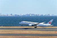 JAL、9月の国内線減便数は8,223便 減便率32%の画像