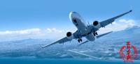 ニュース画像:ANAカーゴ、生産者販売配送支援サービス 国内47空港に拡大
