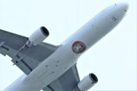 ニュース画像:祈・疫病退散、JALアマビエJET 運航開始