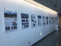 ニュース画像:釧路空港、タンチョウの保護活動パネル展 9月27日まで