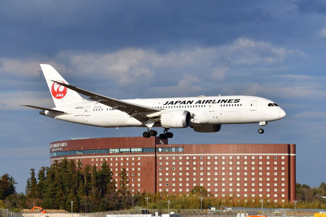 ニュース画像 1枚目:JAL 787 イメージ (ポン太さん撮影)
