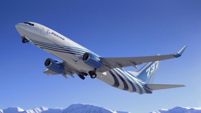 ニュース画像 1枚目:737-800BCF