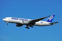 ANA、成田/フランクフルト線で貨物定期便 10月下旬からの画像