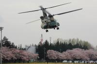 ニュース画像:熊谷基地、CH-47Jヘリコプター体験搭乗 参加者を募集