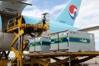 ニュース画像:大韓航空、コロナワクチン輸送に備えタスクフォースチーム設置