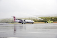 ハワイアン航空、オハナ・バイ・ハワイアンのブランドを運休の画像