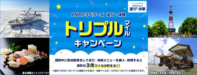 ニュース画像 1枚目:ANAトラベラーズ 遊び・体験トリプルマイルキャンペーン