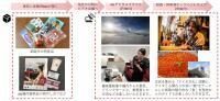 ニュース画像 2枚目:JALオンライントリップ  流れ