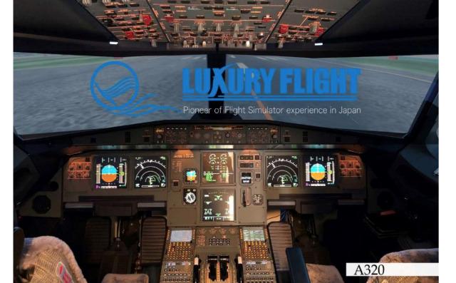 ニュース画像 1枚目:LUXURY FLIGHT イメージ