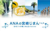 ニュース画像:ANA、宮崎線で搭乗キャンペーン セグウェイツアーや名産品あたる