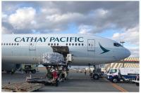 キャセイ、ボージョレ・ヌーボーを新千歳に空輸 貨物臨時便で計9万本の画像