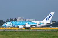ニュース画像:ANA、成田から初「初日の出フライト」 FLYING HONUで