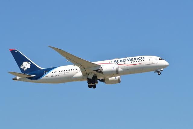 ニュース画像 1枚目:アエロメヒコ航空 イメージ (レガシィさん撮影)