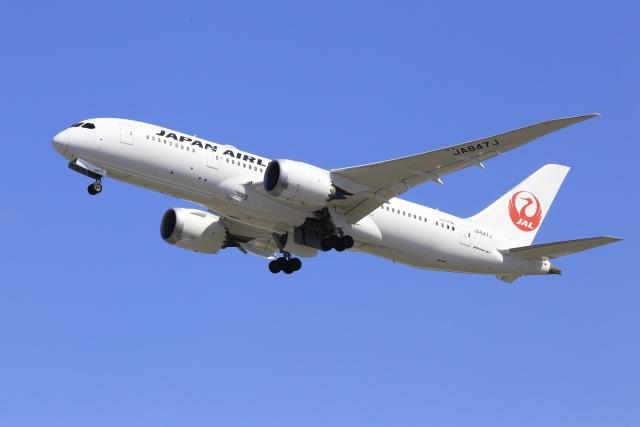 ニュース画像 1枚目:JAL(aki241012さん撮影)
