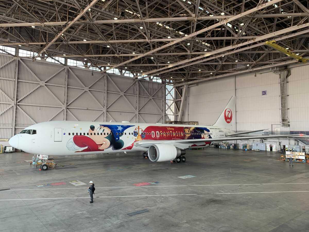 ニュース画像 14枚目:11月18日から日本の空を飛ぶ