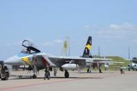 ニュース画像:小松基地、第306飛行隊の航空祭記念塗装機を公開 訓練飛行を実施中