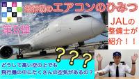 飛行機のトイレでうんちをするとどこへ行く? JAL整備士の解説動画の画像