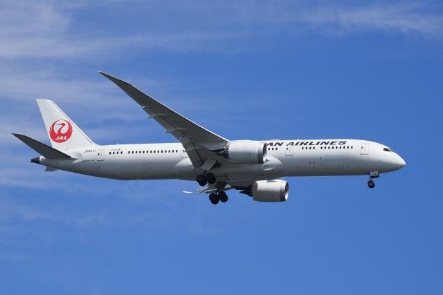 ニュース画像 1枚目:JAL 787-9 イメージ (飛行機ゆうちゃんさん撮影)