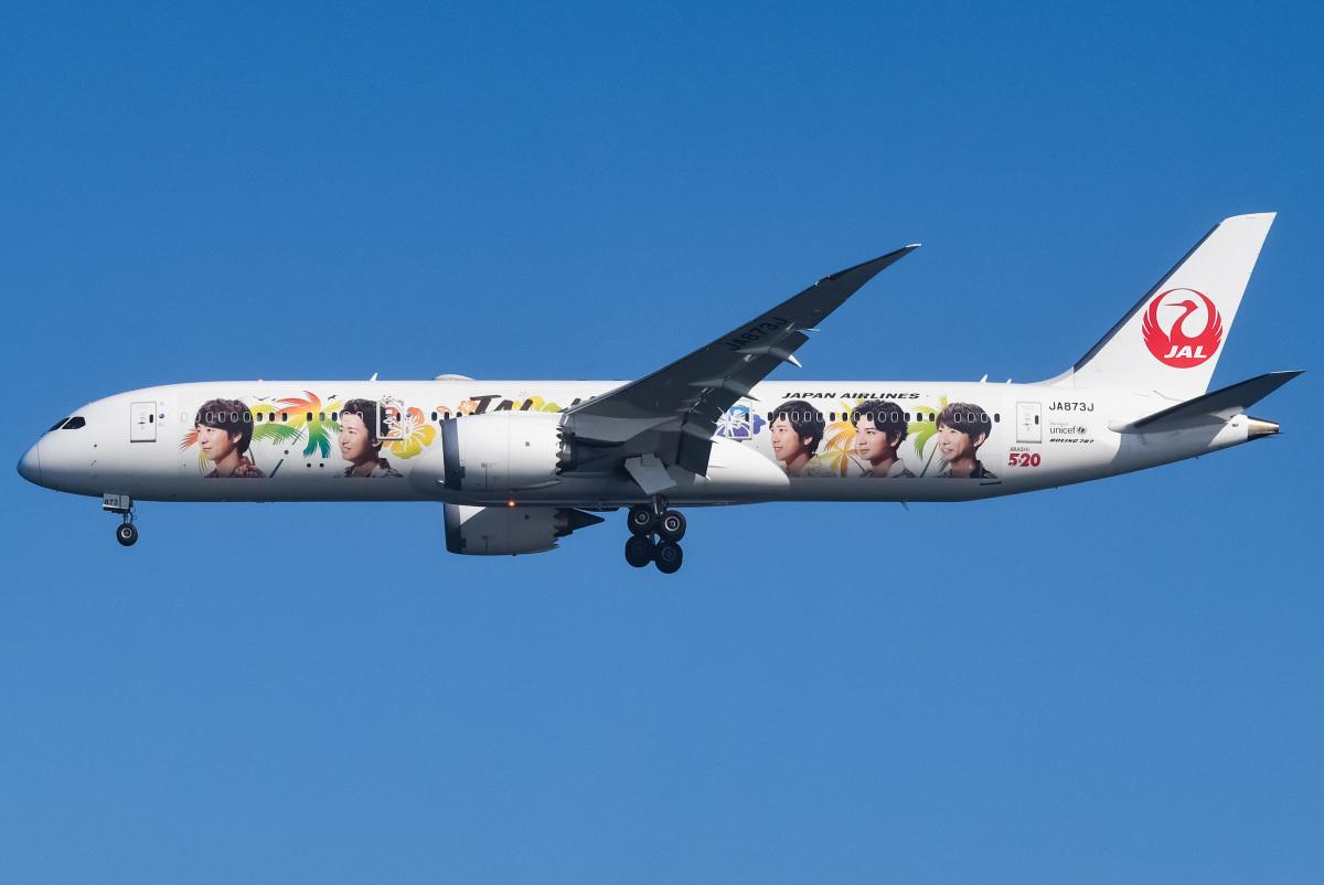 ニュース画像 6枚目:「嵐ジェット ハワイ『ARASHI HAWAII JET』」 JA873J  ボーイング787-9型機  (renseiさん撮影)