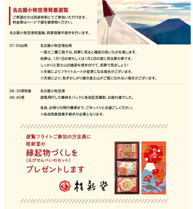 ニュース画像 2枚目:FDA名古屋小牧発着の遊覧フライト