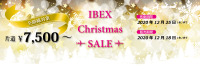 アイベックス、「クリスマスセール」片道7,500円からの画像