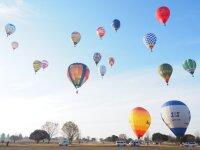 ニュース画像:熱気球ホンダグランプリ最終戦、渡良瀬で開催 熱気球体験は要事前申込