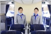 ニュース画像:ANA、CA座談会オンラインツアー「ハワイ編」 A380機内紹介も