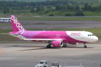 ニュース画像:ピーチ、台北線を大幅に減便 計画242便が29便に