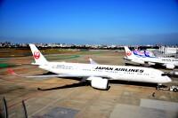 ニュース画像:JAL、国際線旅客便の燃油サーチャージ 3月発券分まで非徴収