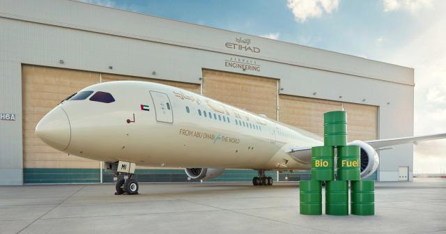 ニュース画像 1枚目:エティハド航空 787-10 ecoDemonstrator、現在もロゴが貼り付けられている